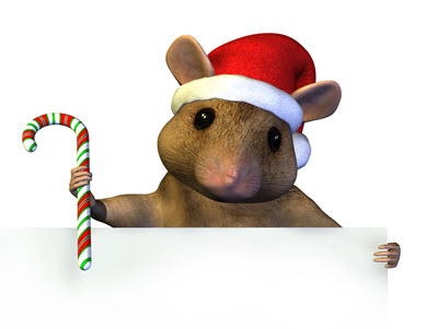 bigstock-Christmas-Mouse-With-Sign-Edge-400